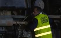 Colisão entre camiões mata sete vacas na A23