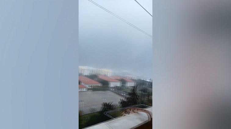 Árvores arrancadas do solo pelo tornado de Faro — Vídeo