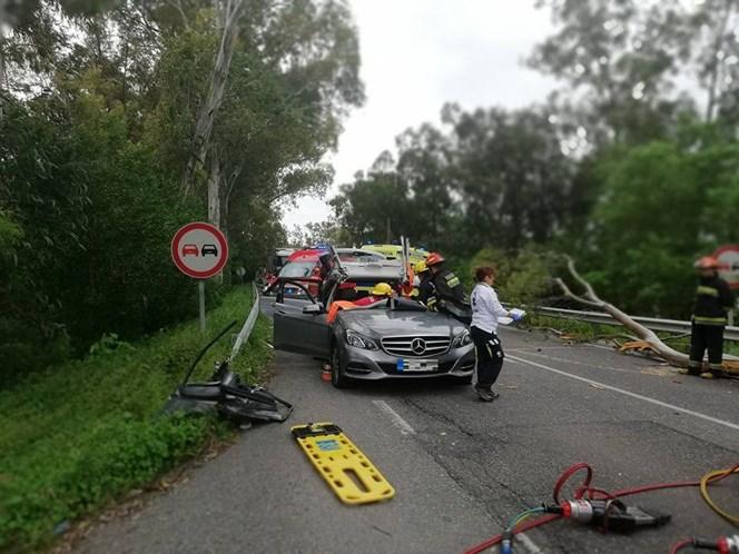 Casal atingido por árvore na EN118 — Fotos
