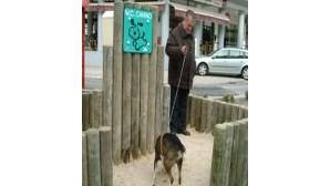 Dejectos de cães dão coima para os donos