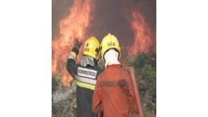 Governo compra helis para combater fogos