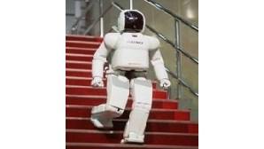 Direitos humanos para robôs