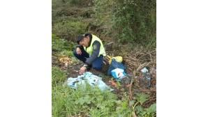 Crimes contra ambiente vão para a GNR