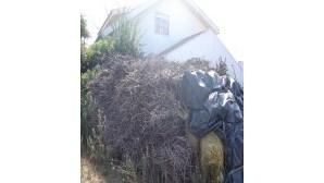 Depósito de lenha junto a casa em Cacia pode originar incêndio