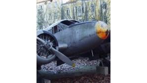 Relíquia da Força Aérea apodrece no Parque da Cidade em Leiria