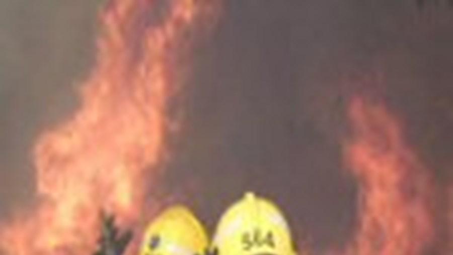 Primeiro incêndio da época destruiu mato no Algarve