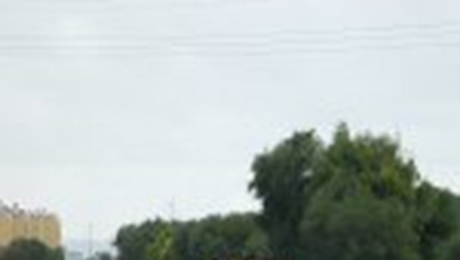 Peões no barreiro reclamam passagem superior no IC21