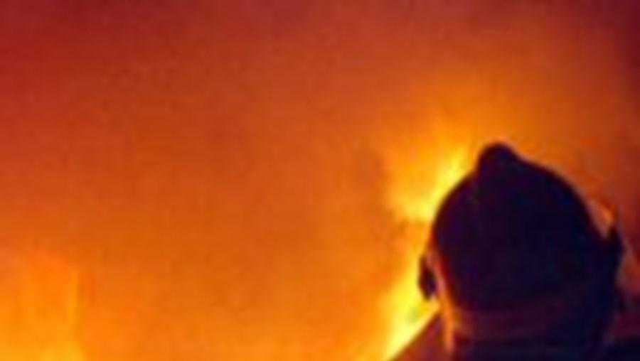 Novo incêndio nas Matas Nacionais, Portela