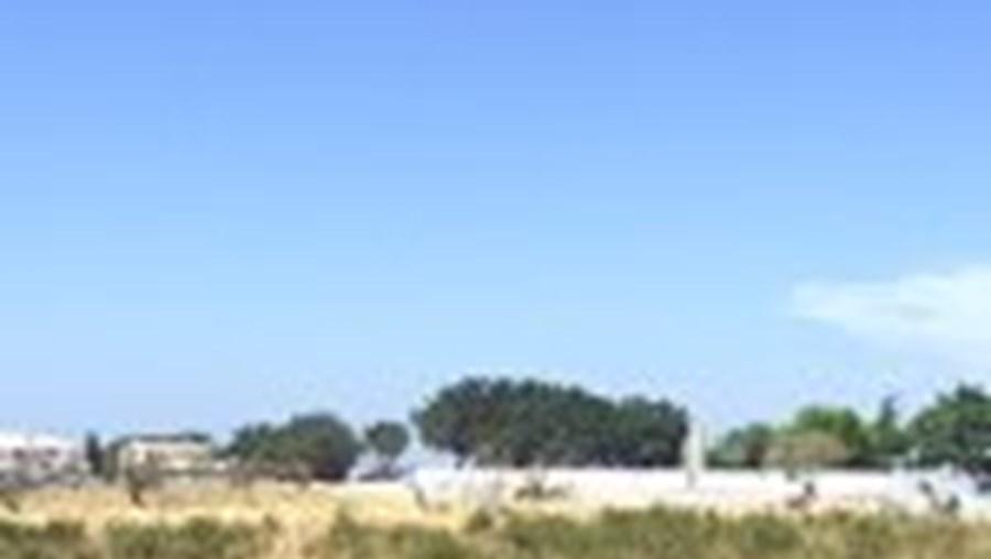 A acção da GNR, envolvendo 25 militares, teve lugar nos Brejos, próximo do cemitério novo da cidade