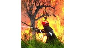 Incêndio circunscrito em Mangualde