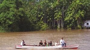Bebé resiste cinco dias na Amazónia