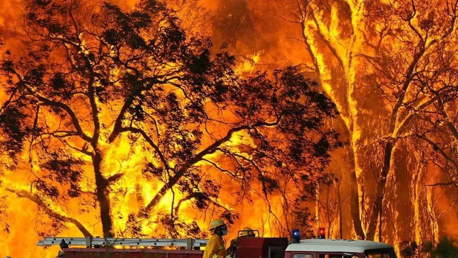 Vítimas mortais de incêndios na Austrália superior 220