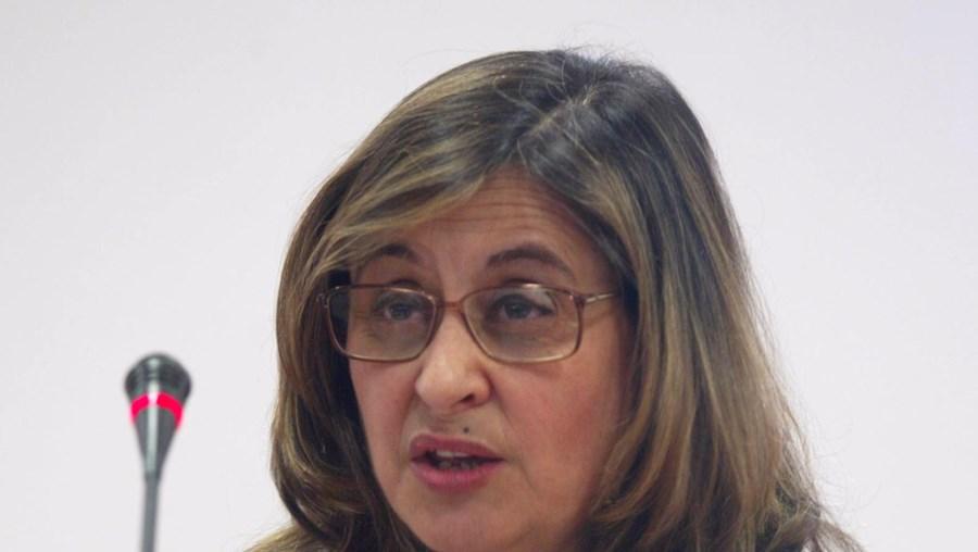 Fernanda Palma