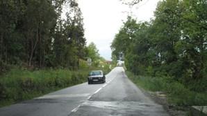 Falta limpar estrada em Lomar