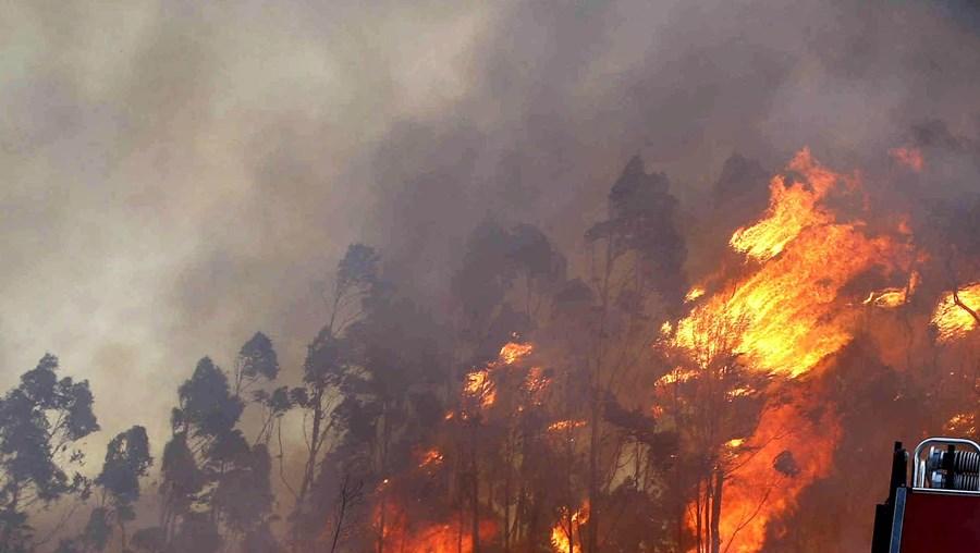 GNR deteve incendiário
