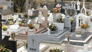 Cemitério vandalizado
