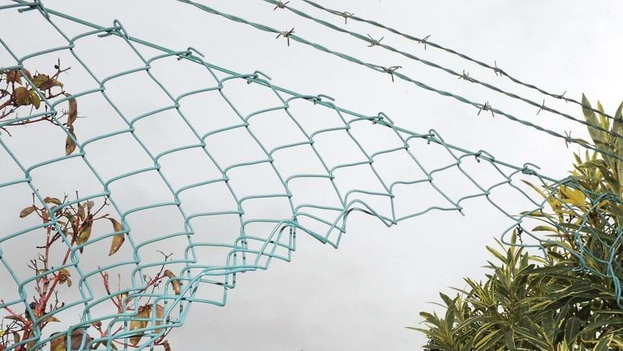 Os assaltantes cortaram a rede que delimita a propriedade para entrar no terreno do casal Allemann. Depois dispararam para o ar para os atrair até à rua