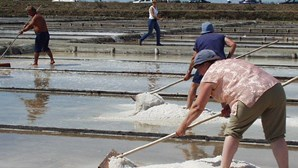 Ecomuseu para preservar produção artesanal de sal