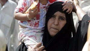 Iraque: Autoridades matam 58 mil cães vadios