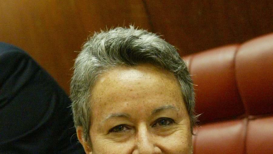 Directora da Cinemateca rejeita qualquer desacerto com Mexia mas reconhece limitações financeiras