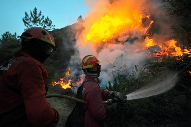 Incêndios têm devastado zonas de mato