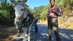 Apanhado a guiar burra bêbedo proibido de conduzir veículos com motor