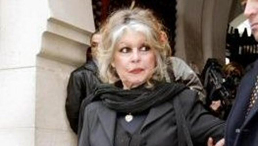 Brigitte Bardot recebeu proposta de Aliança Ecologista Independente