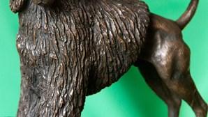 Cavaco vai oferecer escultura de 'Bo' a Obama