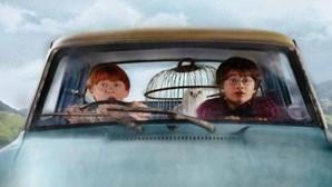 Três feiticeiros de 'Harry Potter' cresceram numa década de filmes