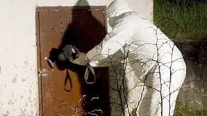 Andaluzia: Cadáver de menina encontrado desfigurado