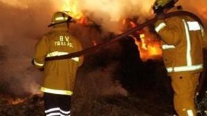 Figueira da Foz: Incendiário detido pela PJ