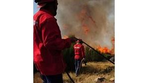 Bombeiros combatem incêndio às portas de Viana do Castelo