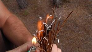Detido pela PJ incendiário que gosta de ver chamas