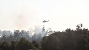 GNR apanha incendiário