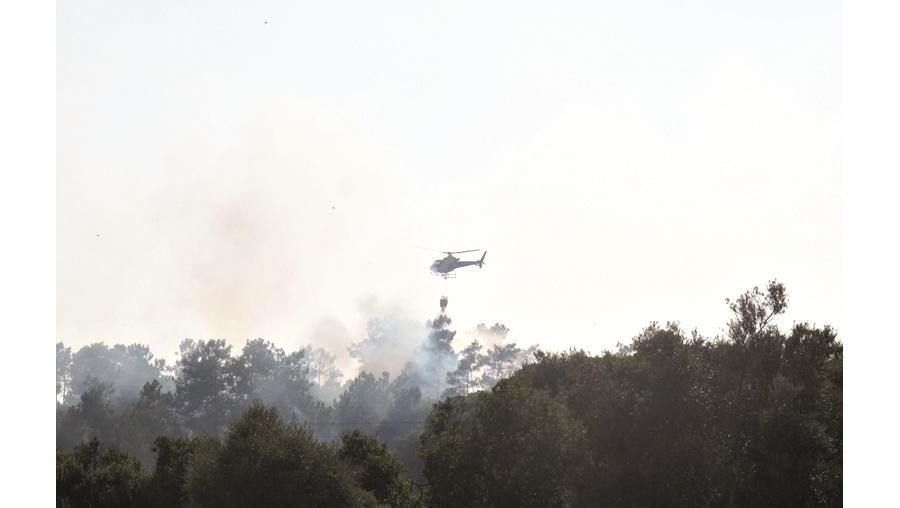 Incêndio em pinhal combatido por helicóptero