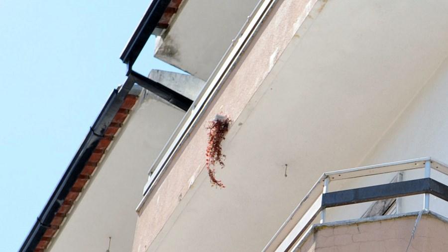 A vizinha Maria do Carmo recorda a mãe da vítima aos gritos no prédio.
