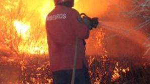 Incêndio lavra em Carrazeda de Ansiães