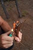 Preso por atear fogos
