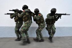 Operações. Nos últimos anos, os rangers cumpriram missões de alto risco no Afeganistão e no Kosovo