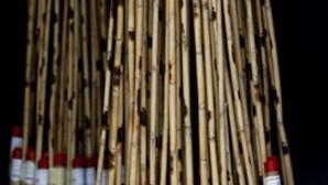 Foguetes na Madeira envolvem 19 toneladas de material