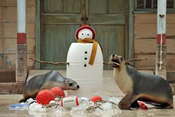 Bonecos de neve são outros elementos que simbolizam o Natal e usados nas mais diversas decorações