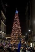 Gigantesco pinheiro de Natal foi erguido no México