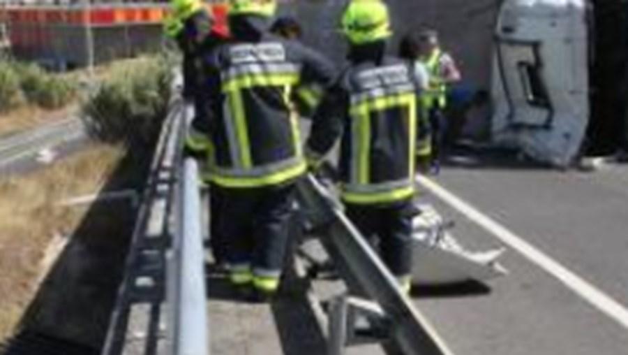 Alerta chegou aos bombeiros cerca das 2 horas dado por um vigilante da concessionária da A24.