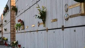 Flores artificiais nos cemitérios dão multa