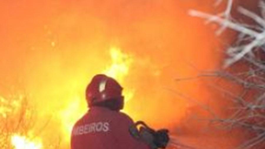 Ao todo, segundo a ANPC, estão activos em todo o país 24 incêndios de um total de 128 ocorridos desde as 00h00 desta sexta-feira
