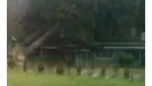 Árvore cai em cima de casa após corte desastrado (COM VÍDEO)