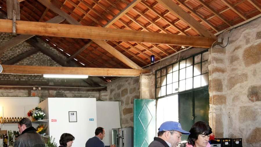 Espaço tem seis licenças e está instalado num armazém de vinhos na rua de Agramonte