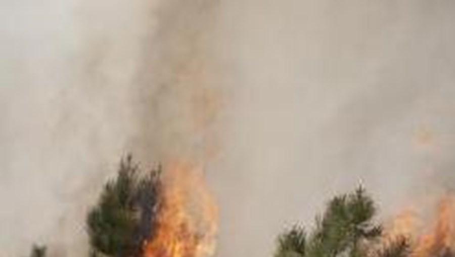 O incêndio em Castro Daire foi dominado às 04h26 e o de Penela às 03h21