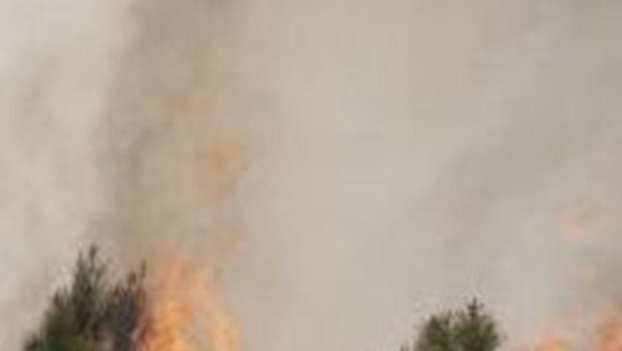 Nos últimos cinco dias registaram-se tantos fogos como em todo o mês de Março de 2011
