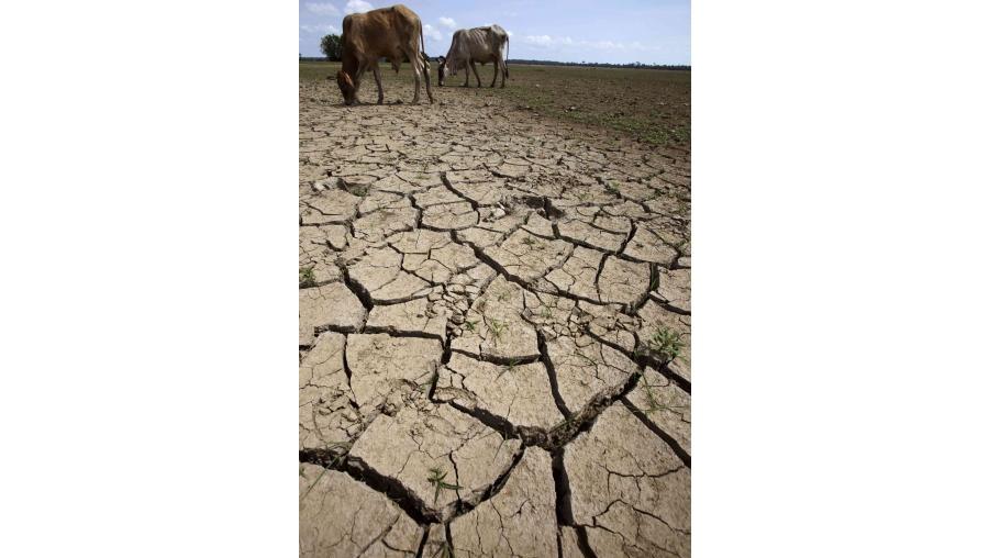"""O IM admite que o cenário """"mais provável"""" é que se mantenha a situação de seca meteorológica no final do mês"""